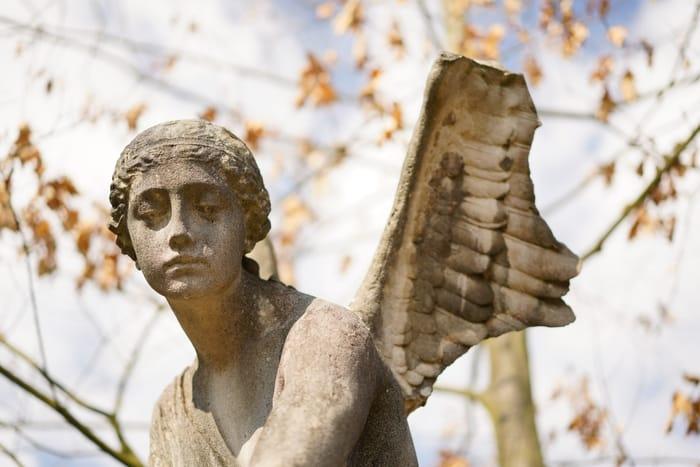Os Anjos e o amor