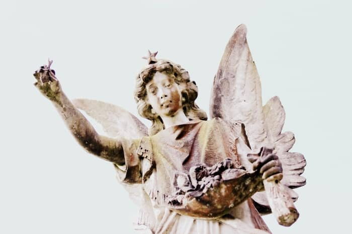 mensagem do seu Anjo da Guarda número 88