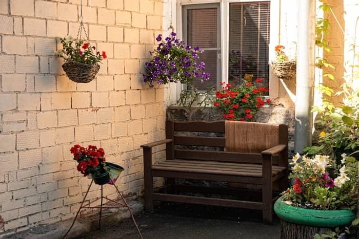 Como funciona a terapia das flores