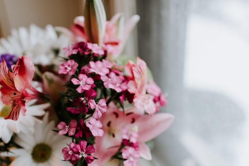 Floral para ansiedade, depressão e nervosismo