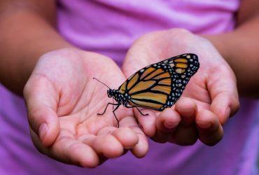 Sensibilidade espiritual: como identificar pessoas altamente sensíveis?