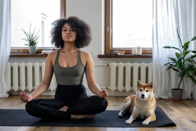 Conclusão sobre o Chakra Esplênico desequilibrado